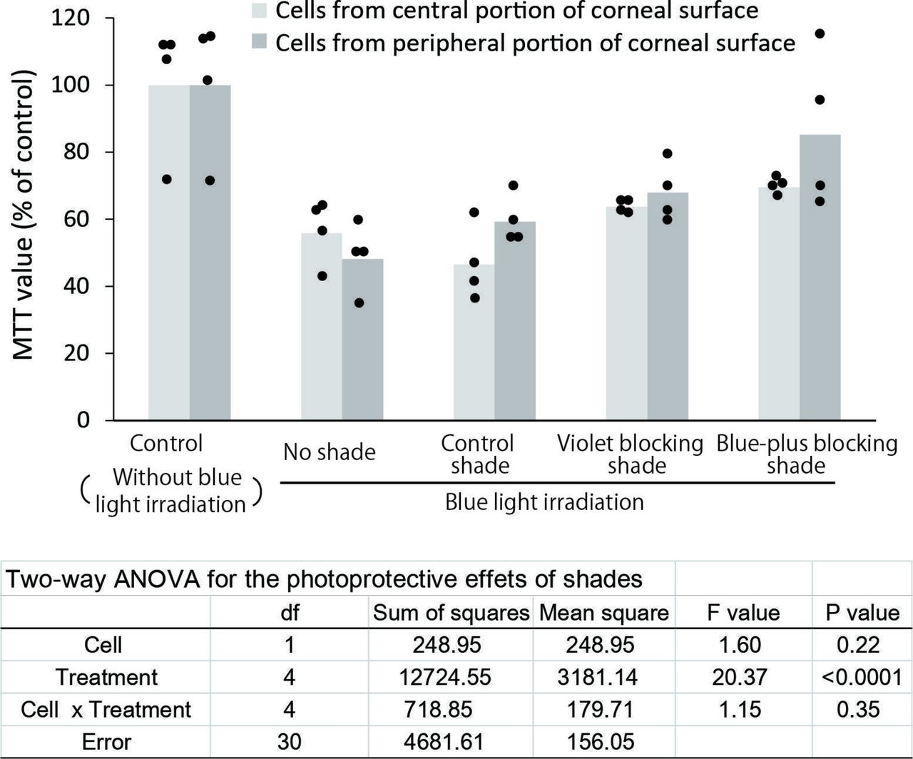 Protective effects of blue light-blocking shades on phototoxicity in